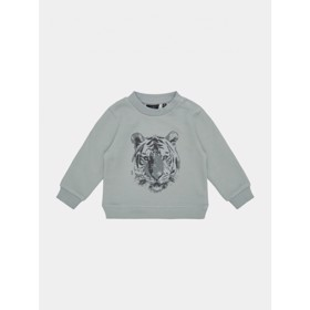 Sweatshirt Hannibal Dusty blue - Petit Sofie Schnoor